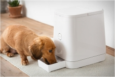 petly-automatic-pet-feeder